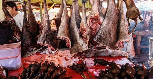 世界上最血腥恐怖的傳統菜市場