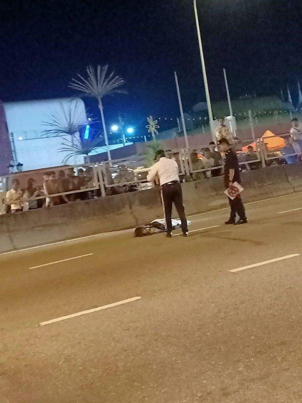 少妇逛同乐会后,过马路被车撞毙