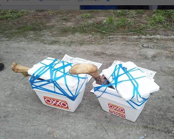 大量尸体被肢解,一袋袋垃圾袋整齐排列